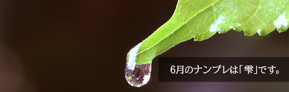 2018年6月のナンプレは「雫」の形です。