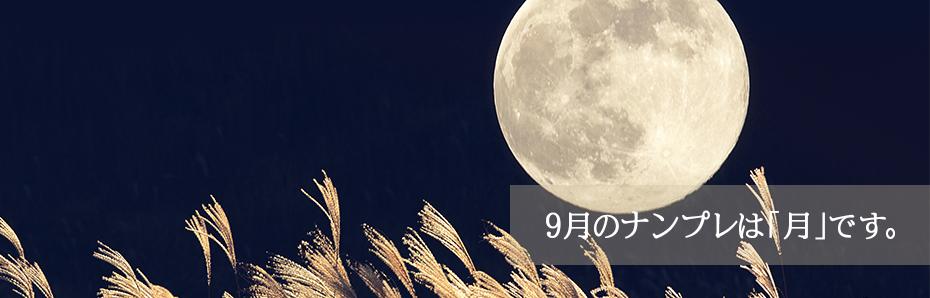 2018年9月のナンプレは「月」の形です。