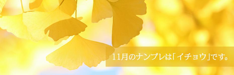 2018年11月のナンプレは「イチョウ」の形です。